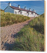 Welsh Cottages Wood Print by Adrian Evans
