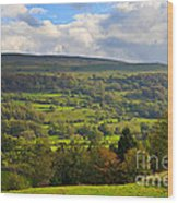 Wensleydale Near Westholme Bank In The Yorkshire Dales Wood Print