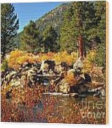 West Fork Of The Carson River Fall Colors Wood Print