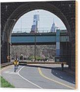 West River Drive Philadelphia Wood Print