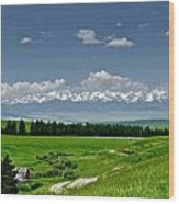 Westerly View Of The Bridger Mountains Wood Print