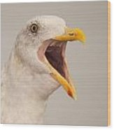 Western Gull Calling Loudly Wood Print
