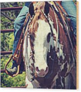 Western Paint Horse Wood Print