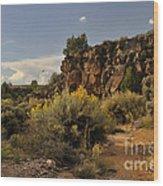 Westward Across The Mesa Wood Print