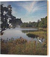 Wetlands - Oil Painting Effect Wood Print