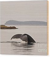 Whale Tail Wood Print