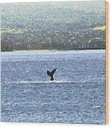 Whale Tail II Wood Print
