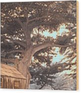Whaler's Cabin Wood Print