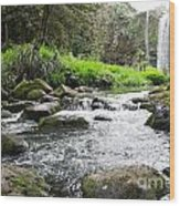 Whangarei Falls In New Zealand Wood Print