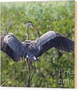 What A Wingspan Wood Print