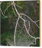 What Webs We Weave Wood Print