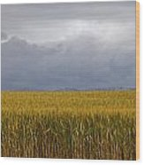 Wheat Field And Storm Wood Print