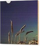 Wheat Field At Night Under The Moon Wood Print