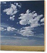 Wheat Field, Central Washington Wood Print