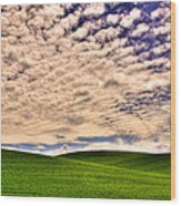 Wheat Field In The Palouse Wood Print