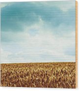 Wheatfield And Cloudy Sky Wood Print