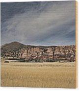 Wheatfield Zion National Park Wood Print