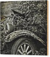Wheels And Roots  Wood Print