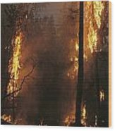 When Flames Crown Into Treetops Wood Print