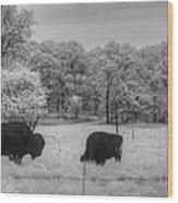 Where The Buffalo Roam Wood Print