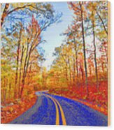 Where The Road Snakes Wood Print