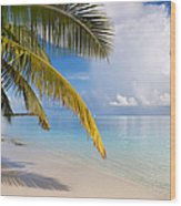 Whispering Palm On The Tropical Beach Wood Print by Jenny Rainbow