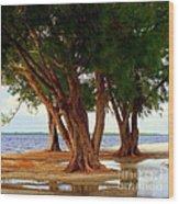 Whispering Trees Of Sanibel Wood Print by Karen Wiles