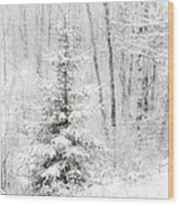 Whispers The Snow Wood Print