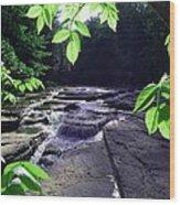 Whitaker Falls Ny Wood Print
