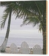 White Beach Chairs Line The Shore Wood Print by Stephen Alvarez