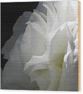 White Begonia I Wood Print