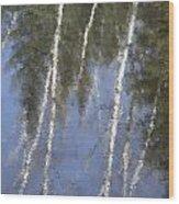 White Birch Trees Wood Print