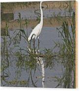 White Bird At June Lake Wood Print