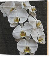 White Bliss Orchids Wood Print