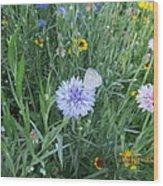 White Butterfly On Purple Flower Wood Print