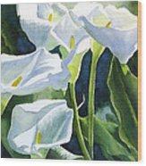 White Calla Lilies Wood Print