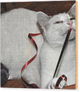 White Cat And Red Christmas Ribbon Wood Print