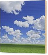 White Clouds In The Sky And Green Meadow Wood Print