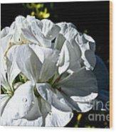 White Dew Wood Print