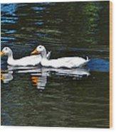 White Ducks At Sterne Park Wood Print