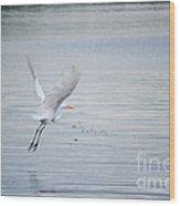 White Egret Flying Wood Print