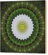 White Flower 2 Wood Print