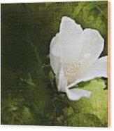 White Flower Texture Wood Print