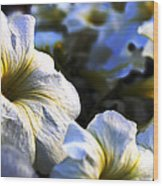 White Flowers At Dusk 2 Wood Print