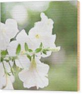 White Flowers In Summer Wood Print
