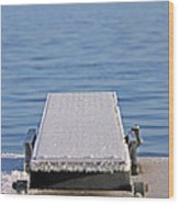 White Frost Diving Board Wood Print