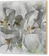 White Geraniums - Watercolor Wood Print