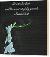 White Gladiola Isaiah 58 2 Wood Print
