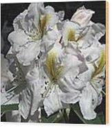 White Gold Wood Print