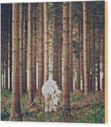 White Horse In The Wood Wood Print by Julia Davila-Lampe